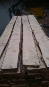 锯材及工程用材 桦木 - 整边材, 桦木