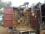 Cameroon Supplies - Kosso Square Logs 30+ cm