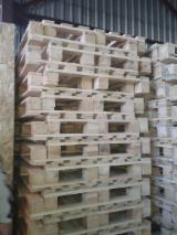 Any  Pallets And Packaging - Export new pallets in the EU