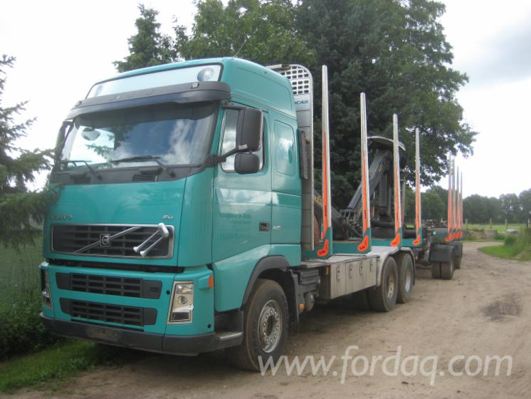 Camion-Transport-Busteni-Volvo-Folosit-2006-in
