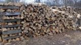 Oak (European) Firewood/Woodlogs Cleaved 60-600 mm