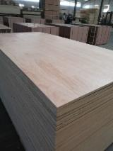 Poplar Film Faced Plywood (Black Film)