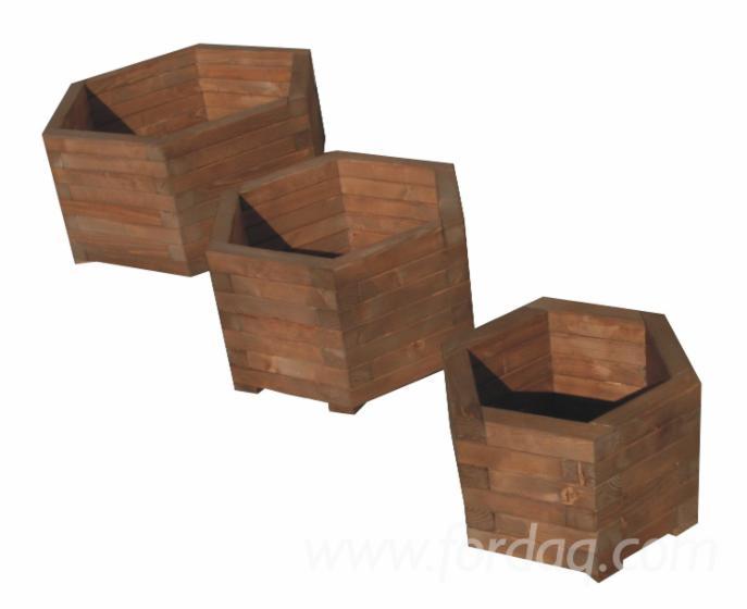 Wholesale Design Fir (Abies alba, pectinata) Romania