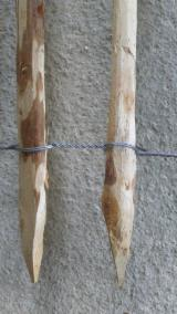 Cylindrical Trimmed Round Wood - Chestnut stakes for fencing