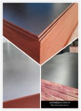 Wholesale  Film Faced Plywood Brown Film - Black film marined plywood