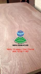 Vend Contreplaqué Naturel Sapelli  2.0-25 mm Chine