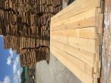 Sawn And Structural Timber Beech - Beech lumber without color condition