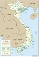 Services and jobs - Pomeranian Timber is looking for an agent in Vietnam