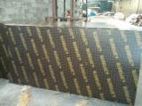 21MM DULLY BIRCH CORE FILM FACED PLYWOOD FIRST GRADE