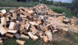 Buy Firewood/Woodlogs Cleaved from Romania - All Broad Leaved Species Firewood/Woodlogs Cleaved -- mm