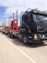 Transportne Usluge Drveta - Kontaktirali Transportera Drveta - Drumski Transport, - 40'kontejneri Spot - 1 put