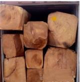 Tropsko Drvo  Trupci - Za Rezanje, Doussie (Afzelia, Lingue, Apa, Chanfuta), sa Indija