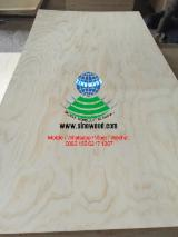 Plywood - Radiata Pine plywood with cheap prices