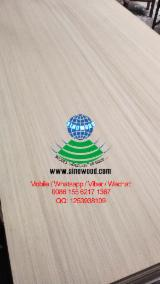 White engineered poplar veneer plywood