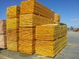 Nadelschnittholz, Besäumtes Holz Tanne Weiß- Zu Verkaufen - Douglasie , Tanne , Fichte