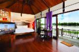 Case Din Lemn Asia - Case din lemn Pin Radiata Rășinoase Din Australia Și Noua Zeelandă