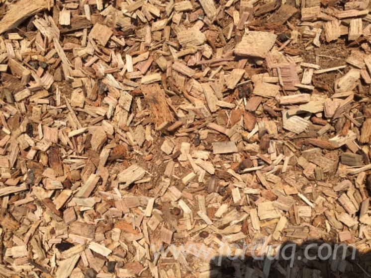 Biomass Wood Chips ~ Usa hardwood biomass chip