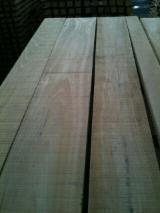 Beech  Planks (boards)  F 1 Serbia