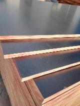 China Plywood - Black film faced plywood for concrete formwork