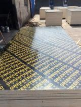 Plywood Supplies - Film Faced Plywood, Black Film, Poplar Core, WBP Glue