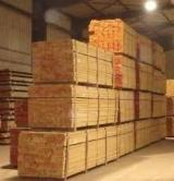 Sapelli  Sawn Timber - Quality Sapelli from Cameroon.
