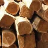 Tropical Wood  Logs - Pawpaw tree and rosewood