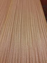 Sliced Veneer - Natural Veneer, Sapelli , Flat Cut, Plain