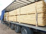 Cylindrical Trimmed Round Wood - We Buy Acacia Stakes