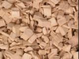 Energie- Und Feuerholz - Elliotiskiefer , Radiata Pine , Taeda Pine Waldhackschnitzel 5  mm