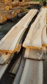 Laubholz  Blockware, Unbesäumtes Holz - Zerreiche - Schnittholz