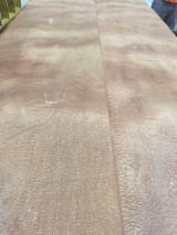 Sapelli  Natural Veneer - Sapelli Burl (mappa) Natural Veneer in Spain