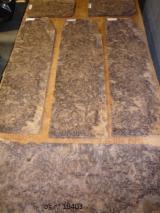 Rotary Cut Veneer For Sale - Black walnut veneer from Italy