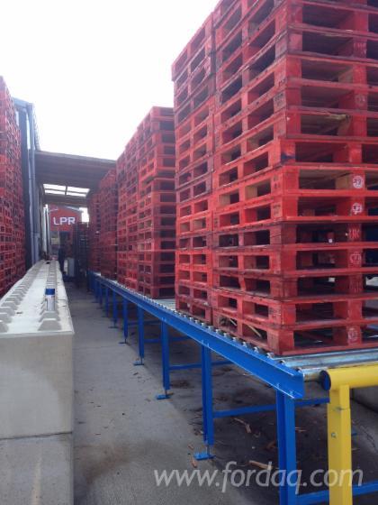 Ligne-De-Production-Compl%C3%A8te---Autres-CekamonSaws-BV-Neuf-en