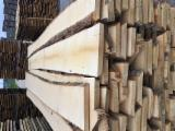 Lithuania Unedged Timber - Boules - Birch Lumber AA/AB KD/FS
