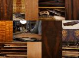 Laubholzstämme Zu Verkaufen - Jetzt Anbieter Kontaktieren - Schnittholzstämme