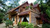 Holzhäuser - Vorgeschnittene Fachwerkbalken - Dachstuhl Zu Verkaufen - Radiata Pine