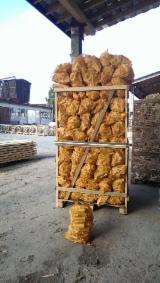Encender  Todas Las Frondosas Lituania