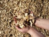 Brandhout - Resthout Houtspaanders Van Gebruikt Hout - Houtspaanders Van Gebruikt Hout 8-20 mm