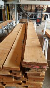 Laubholz  Blockware, Unbesäumtes Holz - Buche 50mm AB unbesäumt leicht gedämpft kd