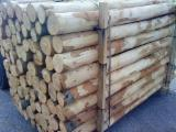 4/6-6/8-8/10-10/12 mm Chestnut (Europe)  Conical Shaped Round Wood in Italy