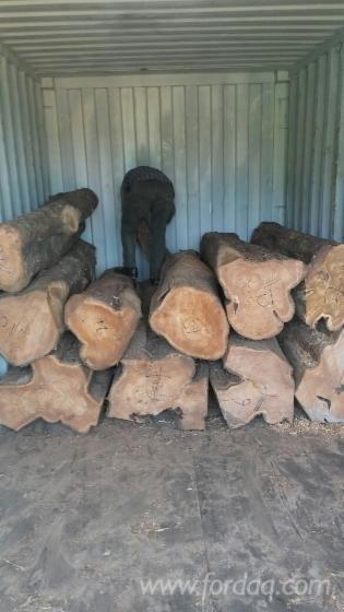 ghana teak wood price in bangalore dating