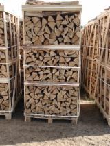 上Fordaq寻找最佳的木材供应 - 劈好的薪柴-未劈的薪柴 薪碳材/开裂原木