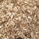 Plaquette forestière