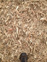 All Species Wood Chips From Forest 80 mm