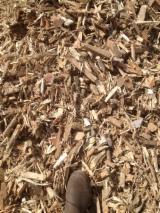 Ogrevno Drvo - Drvni Ostatci - All Species Piljevina Iz Šume Francuska