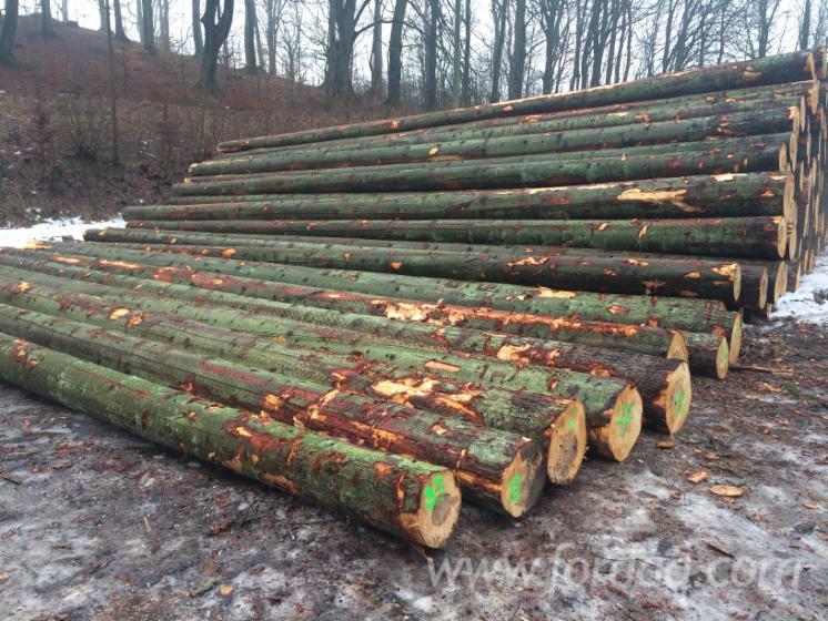Spruce-and-fir
