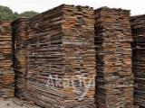 Unedged (timber) Robinia (acacia) sawn wood