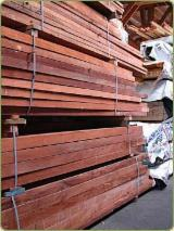 Tropical Wood  Sawn Timber - Lumber - Planed Timber - Mahogany of West African origin