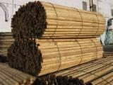 Cylindrical Trimmed Round Wood - Ecological and impregnated poles