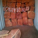 Tropical Wood  Logs -  Doussie AFZELIA AFRICANA REQUEST